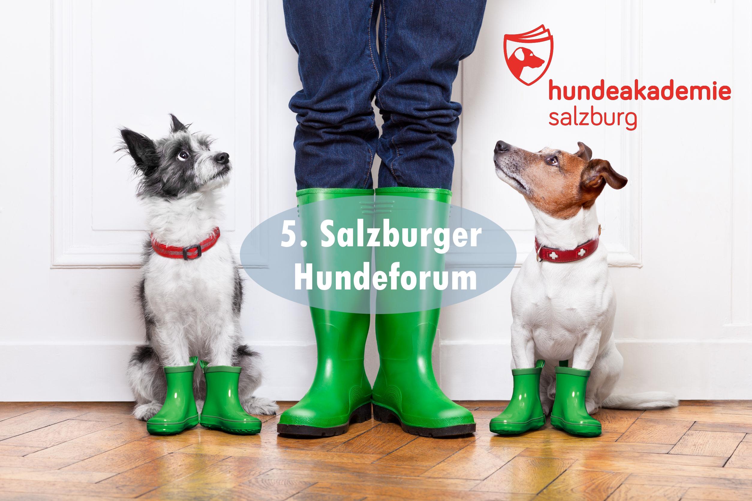 Das 5. Salzburger Hundeforum der Hundeakademie Salzburg 2020